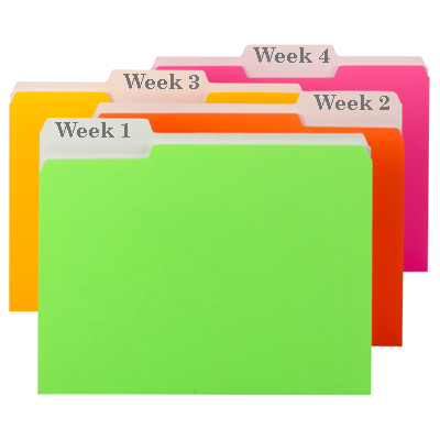One file box - one year planned file folder examples with labels
