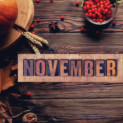 National Holiday Ideas Calendar – November