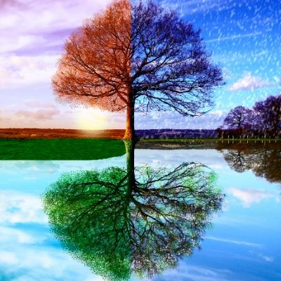 Self-Care for Every Season: Accepting Change